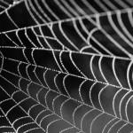 Material Super, Inovasi Mutakhir di Bidang Teknologi